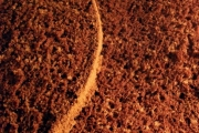 Blat de tort cu cacao feliat
